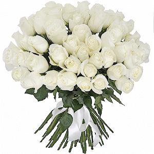 Букет из белых роз премиум 51 шт.