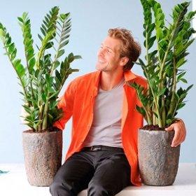Зачем давать имена вашим растениям?